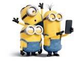 2015 Minions Selfie Poster