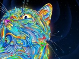 2d Colorful Colorful Cat