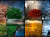 4 Seasons Art
