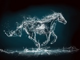 Abstract Water Horse