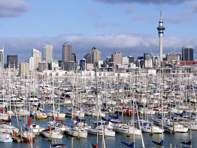Auckland New Zealand Marina Yacht North Island