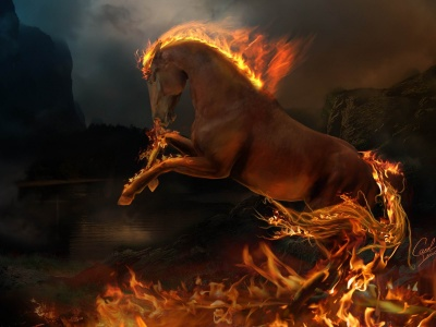 Burning Horse (click to view)