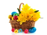 Daffodils Flower Basket Eggs Wrap