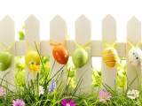 Easter Eggs On Fence