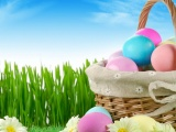 Easter Holiday Eggs Basket Flowers Grass Herbs