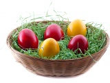 Holidays Easter Eggs In Basket
