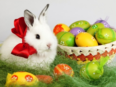 Holidays Easter Rabbits Eggs (click to view)