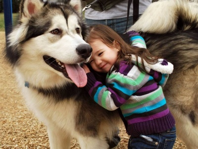 Husky And The Little Kid (click to view)