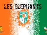 Les Elephants Ivory Coast Football Crest
