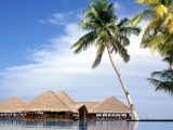 Maldives Entertainment Center Beach Resort Geography Asia Travel Nature