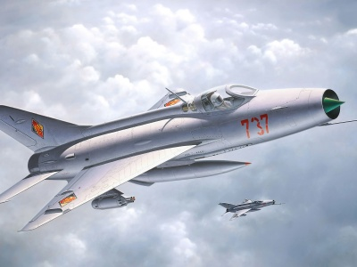 MiG-21 Supersonic Fighter Aircraft (click to view)