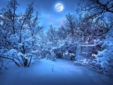 Moonlight On The Snowy Woods