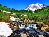 Mountain Stream And Melted Snow