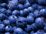 Nature Fruits Food Water Drops Berries Blueberries