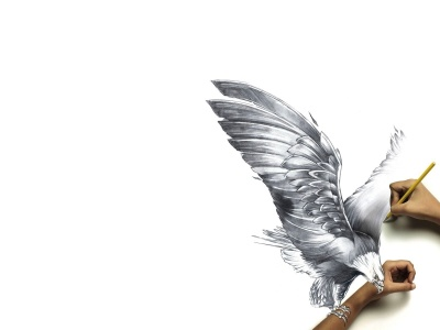 Paper Drawing Bird Hand Pencil Reality (click to view)