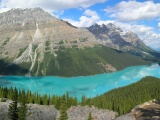 Peyto Lake In Banff N. Park (Canada)