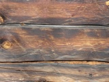 Plank Wood Wall Surface