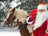 Santa Claus Horse New Year Forest