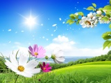 Spring Scene Background