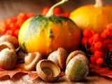 Thanksgiving Backgrounds Images