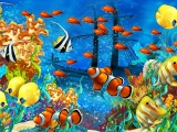 Underwater Fish World