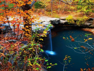 Waterfall Creek Autumn Leaves (click to view)