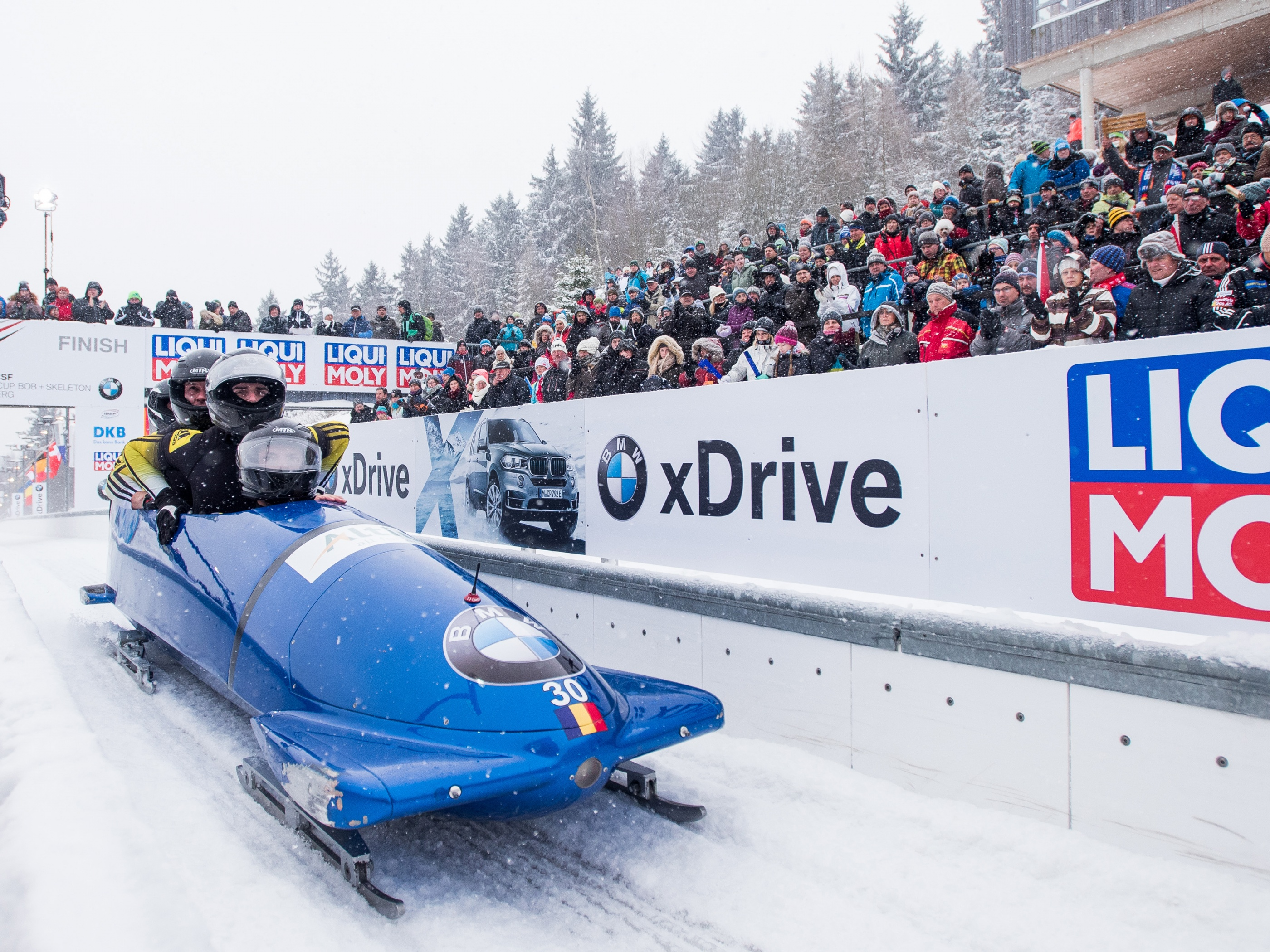 Bobsleigh Winter Sport