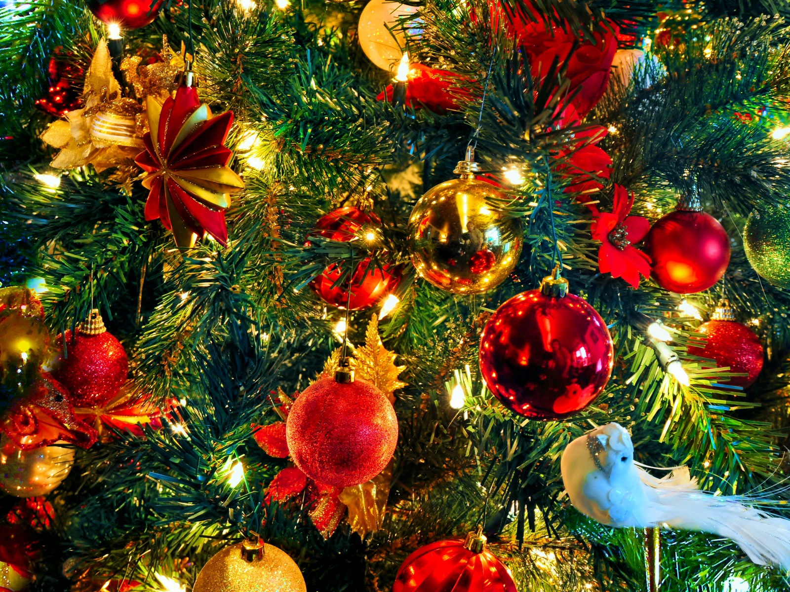 Christmas Bird Ornaments Colorful