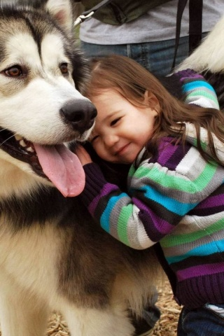 Husky And The Little Kid