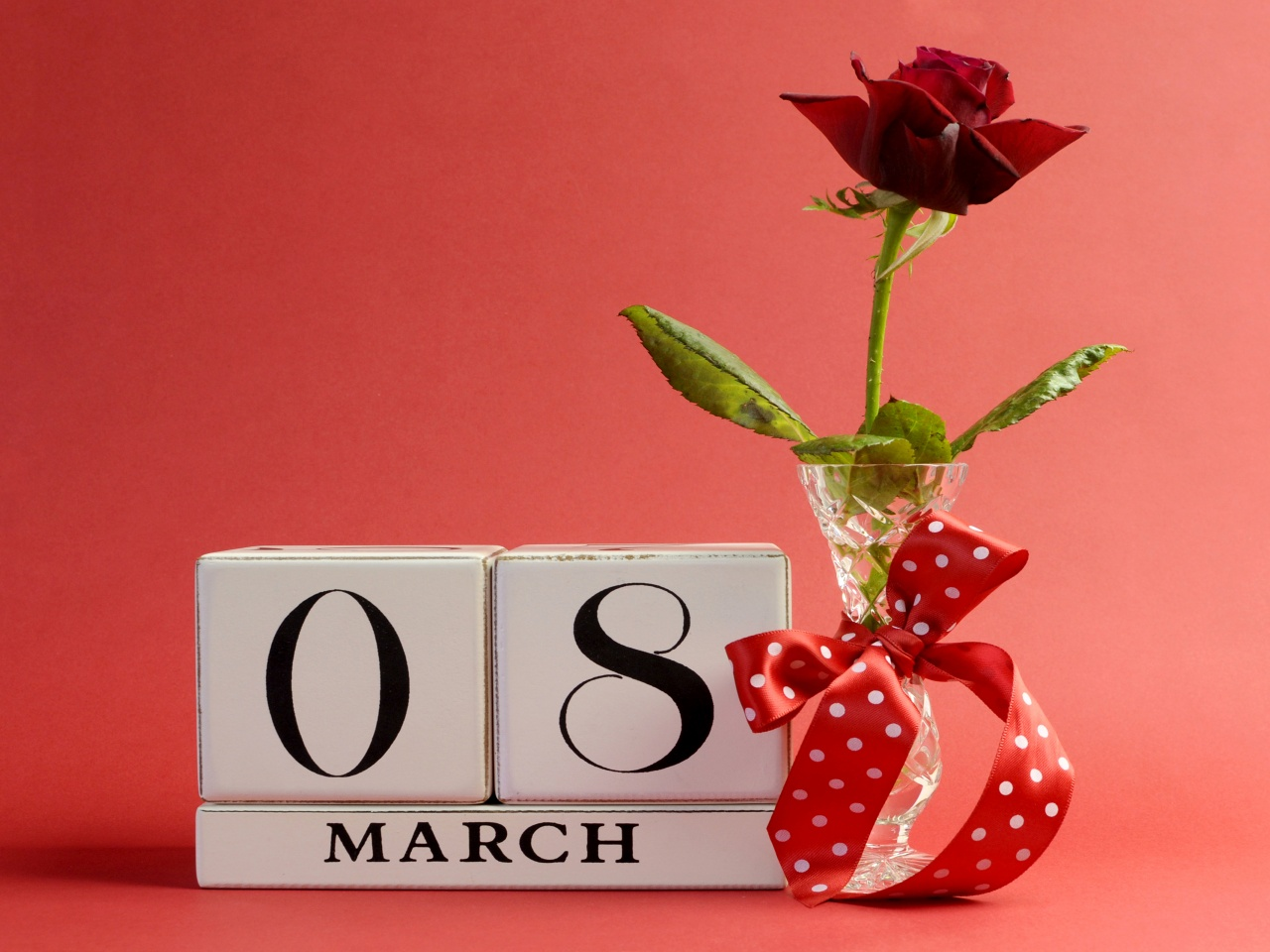 March 8 Roses Holidays