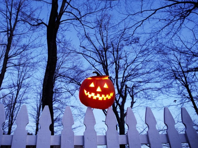 Pumpkin On Fence